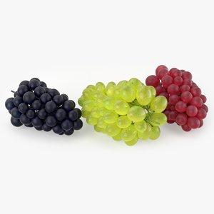 3D model grapes realistic
