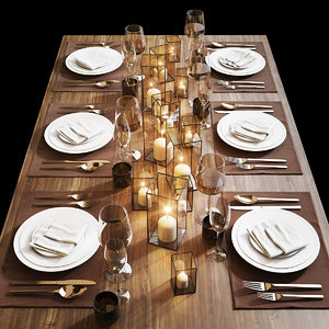 table setting 13 model