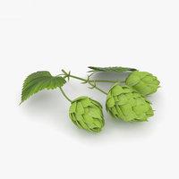 3D model hops plant
