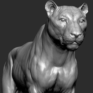 tiger vfx zbrush sculpt 3D model