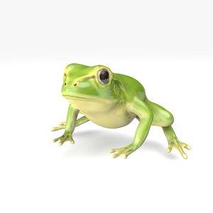 green frog model