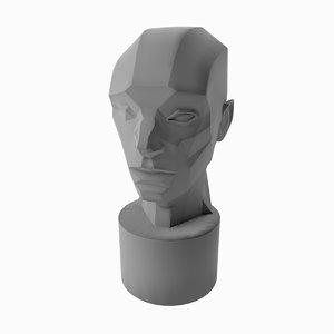 3D asaro head