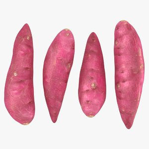 realistic sweet potatoes 3D