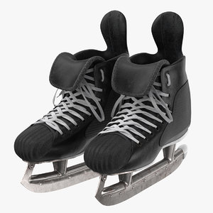 hockey skates 02 old model