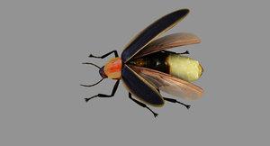 firefly model