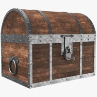 3D real chest model