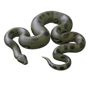 3D model green anaconda