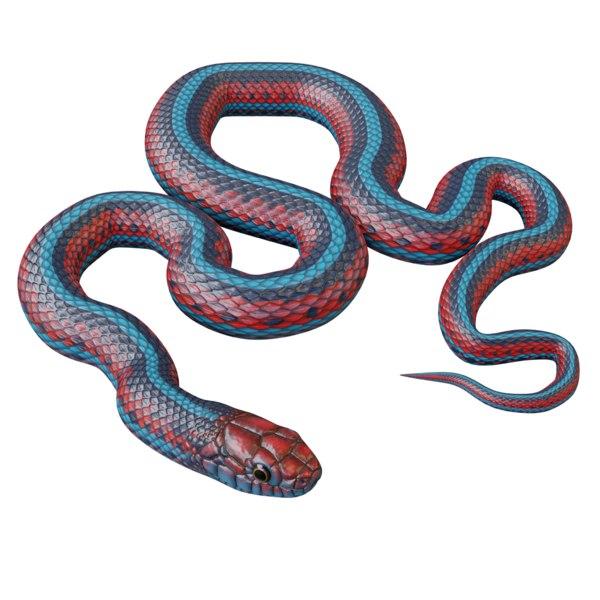 3D san francisco garter snake model