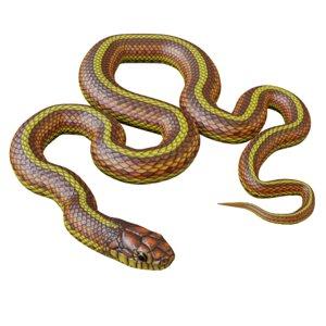 yellow snake animation 3D model