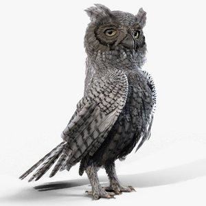 owl rigged animates 3D model