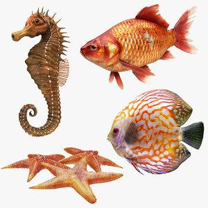 3D underwater animals 1