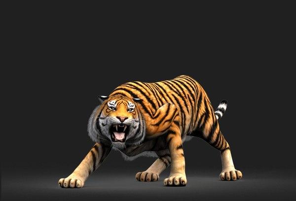 3D model tiger rigged