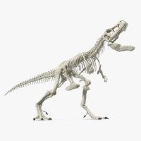 tyrannosaurus rex skeleton standing 3D model
