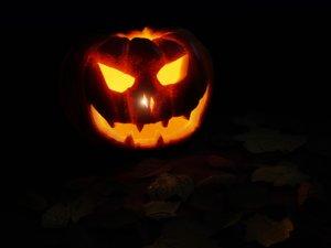 3D pumpkins candles model
