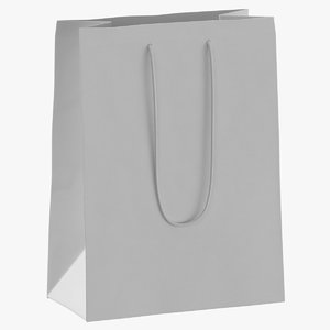 bag paper recycled 3D