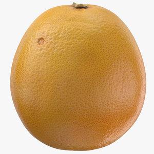 grapefruit 06 3D model