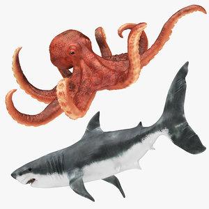 3D model shark octopus