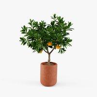 plant design modeled 3D
