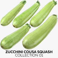3D zucchini cousa squash 01 model