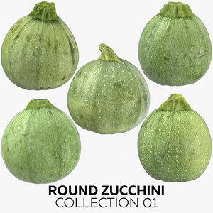 3D zucchini 01 model