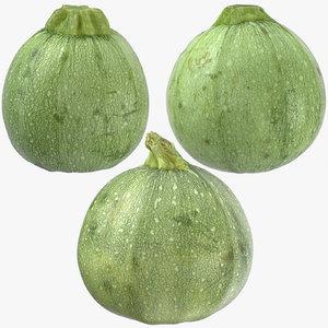 zucchini 02 3D model
