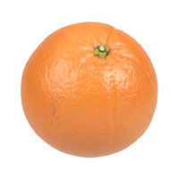 Highly Detailed Orange Scan