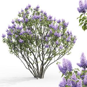 3D bush flowers corona model