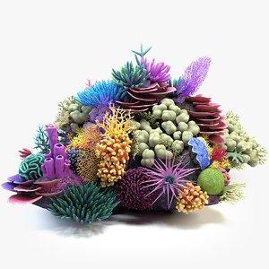 coral reef 01 3D
