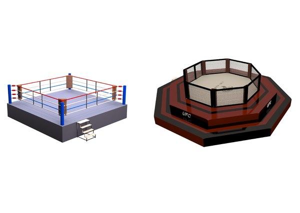 3D arena fight model