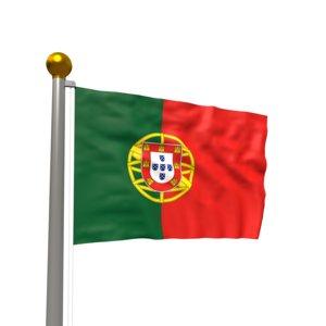 3D realistic waving flag