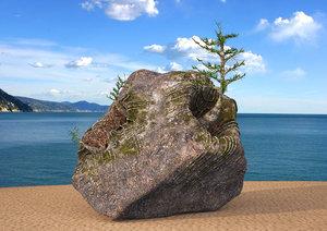 small trees rock 3D model