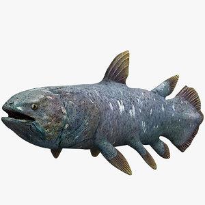 3d coelacanth model