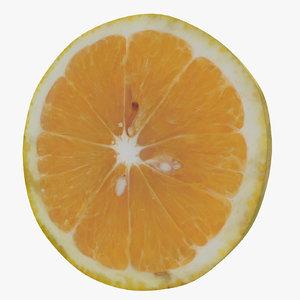3D slice sweet lemon model