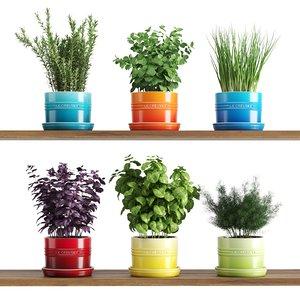 kitchen herbs le creuset 3D model