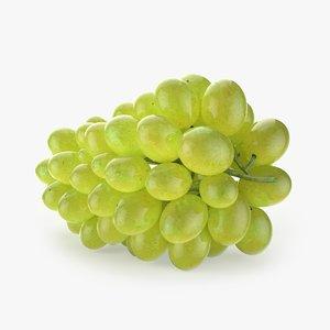 grapes realistic 3D model
