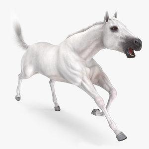 3D white horse animal fur