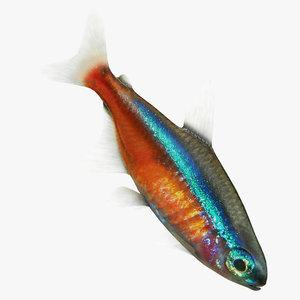 neon fish 3D model