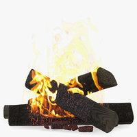 bonfire burning 3D model