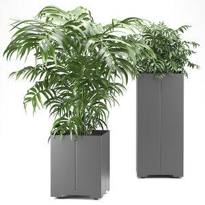 pot cape palm 3D model