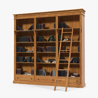 3D wood library bookcase books