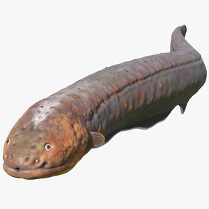 electric eel swimming pose model
