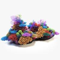 Coral Reef 03