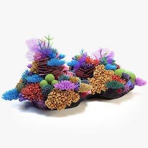 coral reef 03 3D