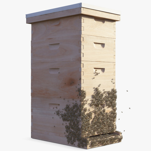 wooden beehive brood box 3D model