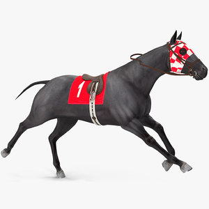3D racehorse black horse rigged model