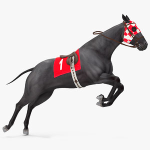 racehorse black horse rigged 3D model