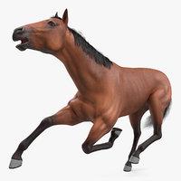 bay horse fur rigged 3D model
