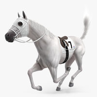 3D white racehorse horse fur