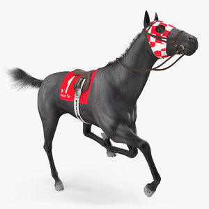 black racehorse horse fur 3D model