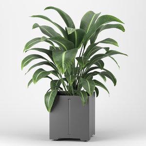 3D plant pot cape